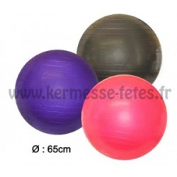 PLEIN AIR : BALLON DE GYM YOGA FITNESS Ø 65 cm